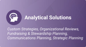 Analytical Solutions